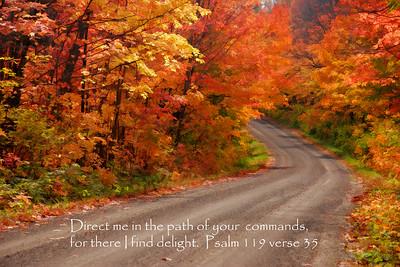 Psalm 119 verse 35