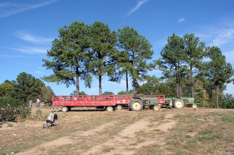 Let's go on the hayride!