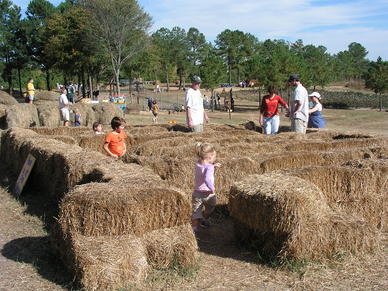The hay maze was a big hit.
