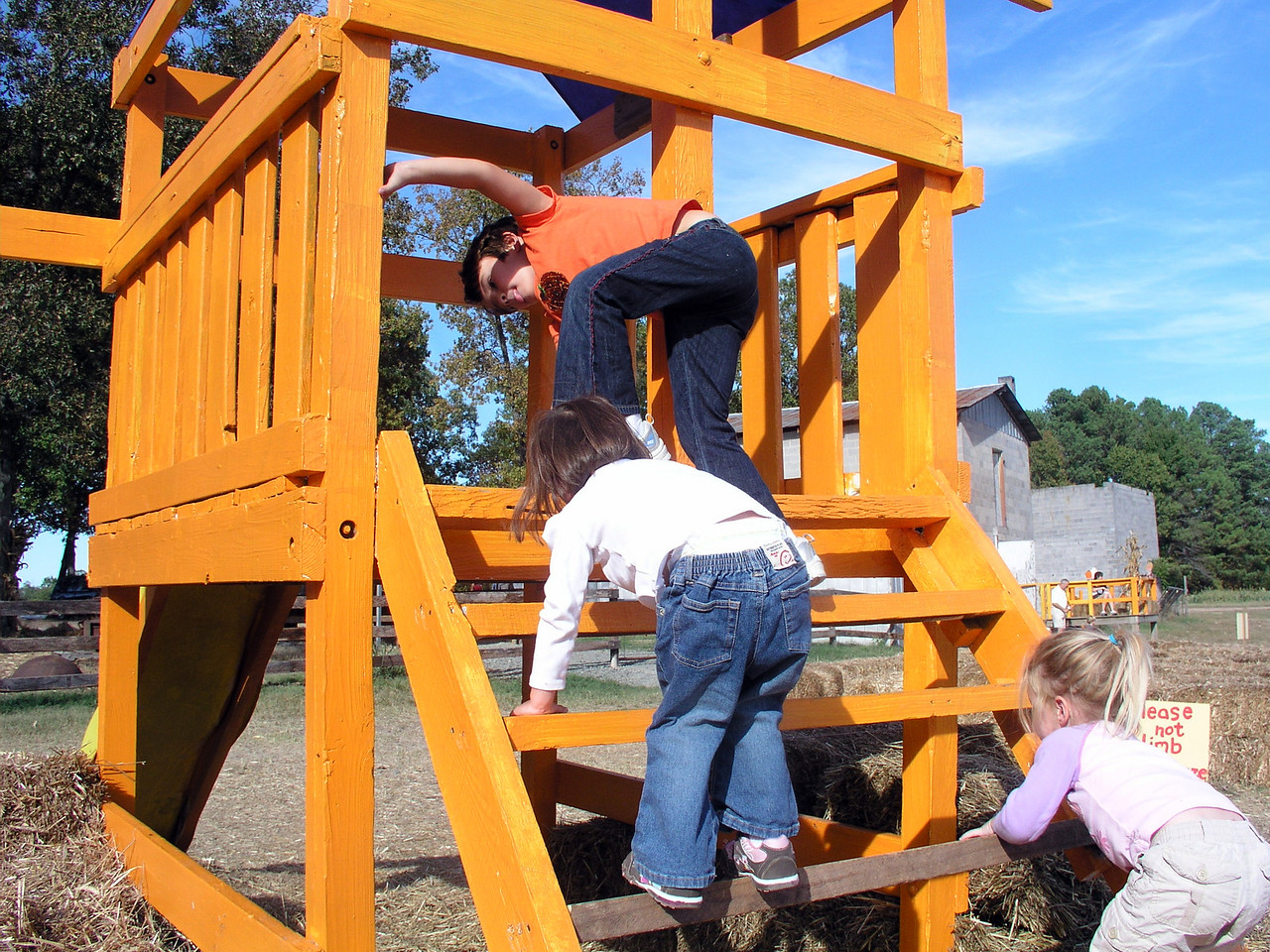Everyone loves this play structure.