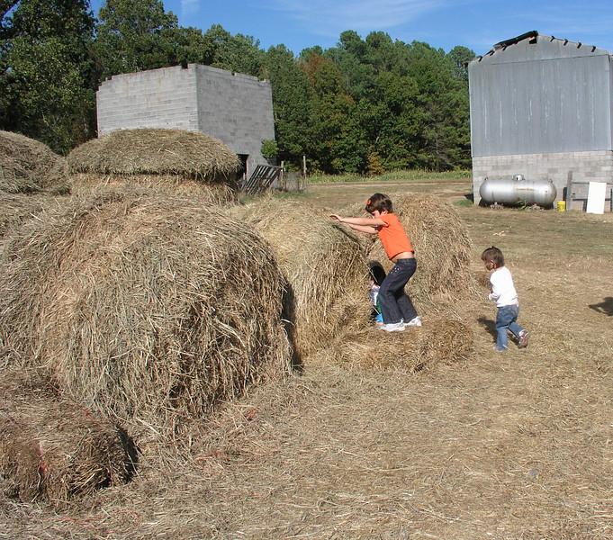 Can you climb the haystacks?