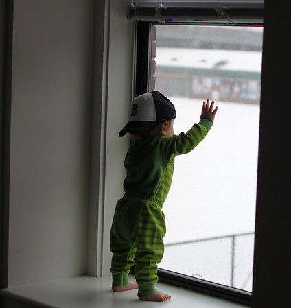 watching the snow