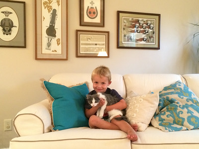 Nana and grandpa's new kitten Ollie.