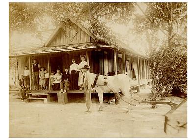 Pierce Family History