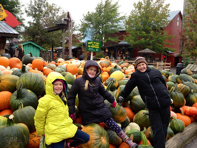 Pumpkin Farm Fun 2014