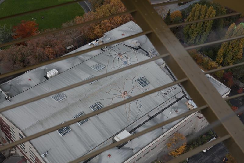 Seattle-WA-110212-9109