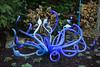 Seattle-WA-110212-9239