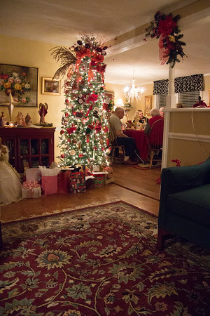 Breedlove Christmas '15 (2 of 23).jpg