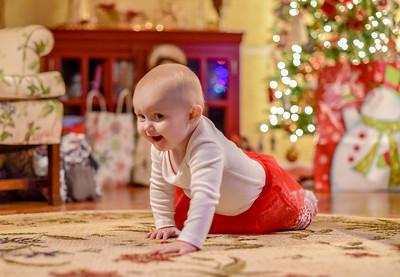 Breedlove Christmas '16-5147