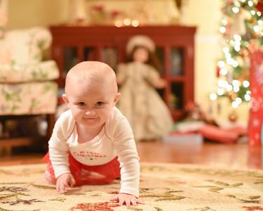 Breedlove Christmas '16-5142