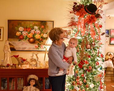 Breedlove Christmas '16-5223