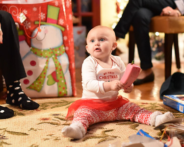 Breedlove Christmas '16-5179