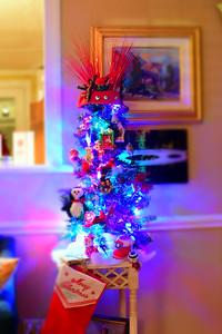 Breedlove Christmas '16-5131