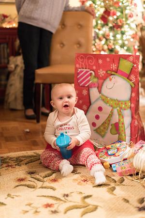 Breedlove Christmas '16-5203