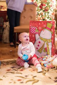 Breedlove Christmas '16-5202
