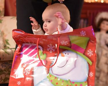 Breedlove Christmas '16-5193