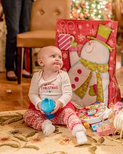 Breedlove Christmas '16-5201