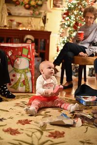 Breedlove Christmas '16-5181