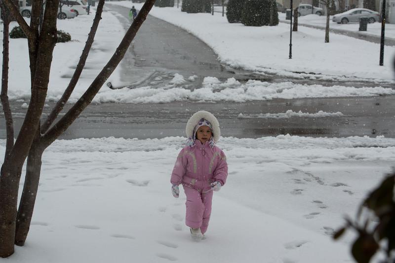Snow Day Feb 2014 260