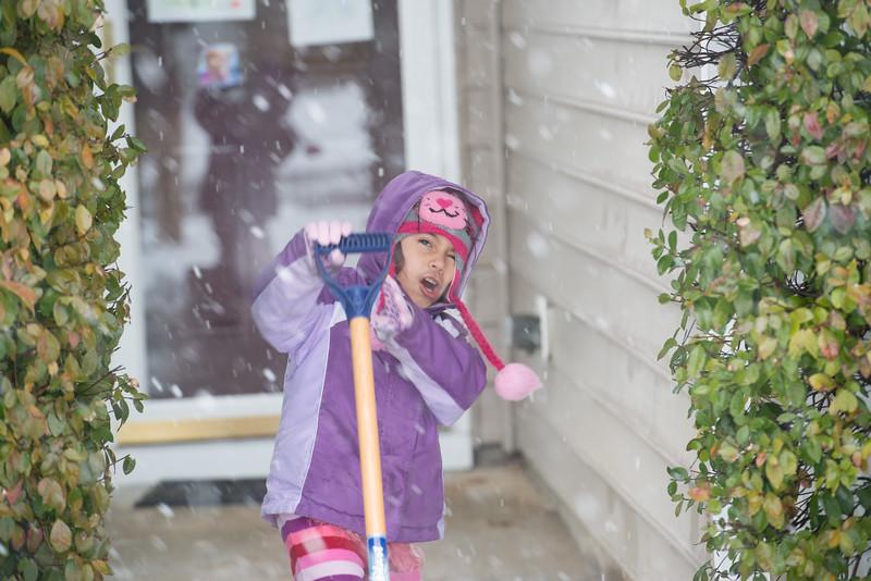 Snow Day Feb 2014 236