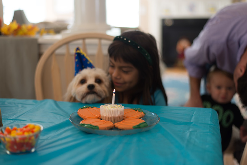Charlie's Birthday party '14 23.jpg