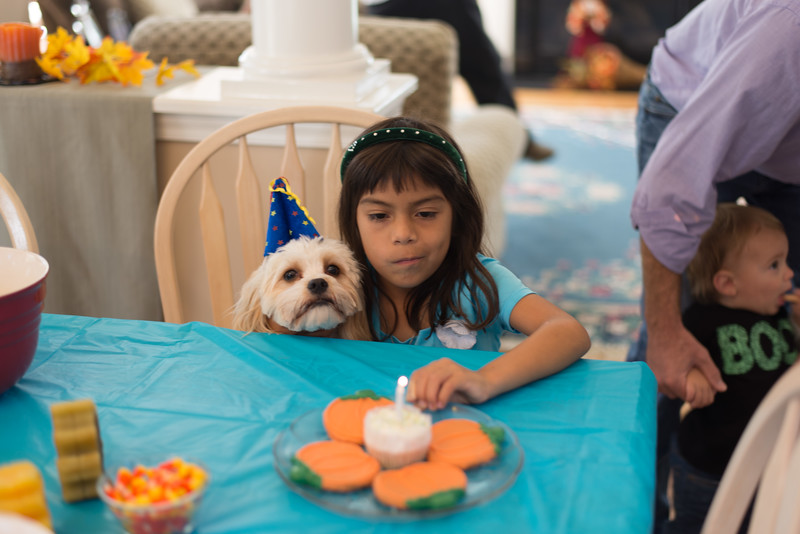 Charlie's Birthday party '14 24.jpg