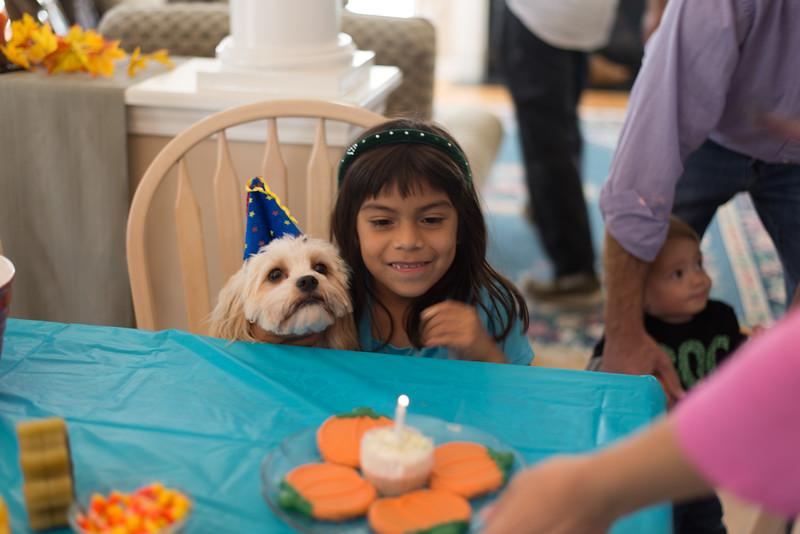 Charlie's Birthday party '14 25.jpg