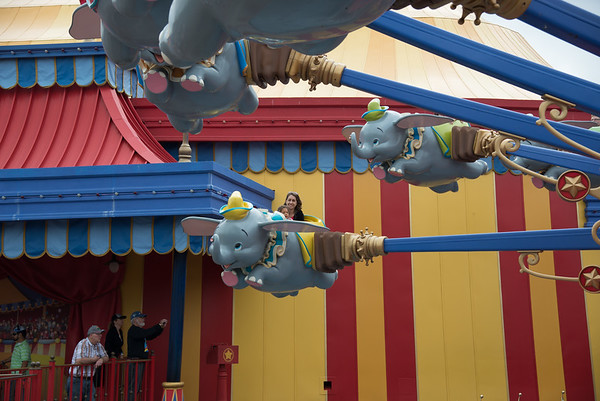 Disney with Harrells 123
