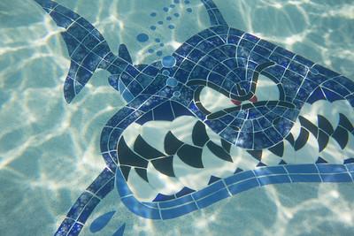 Pool fun-411