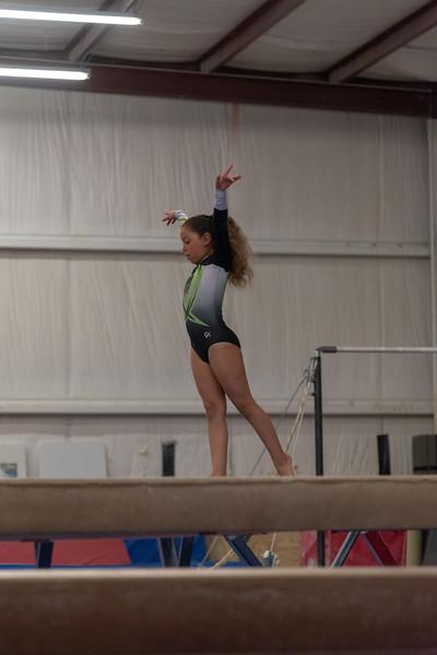 Brianna's Gymnastics