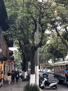 Guatemala 2019 - 18 of 685