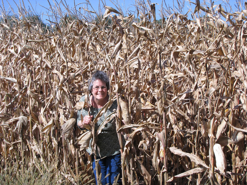 Who's that peeking out of the corn?<br /> October 11, 2010