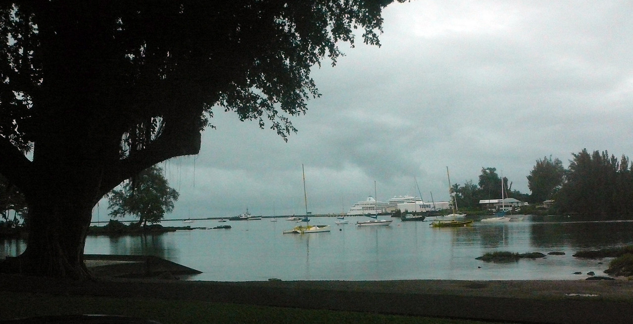 View from Banyan Drive - February 6, 2008