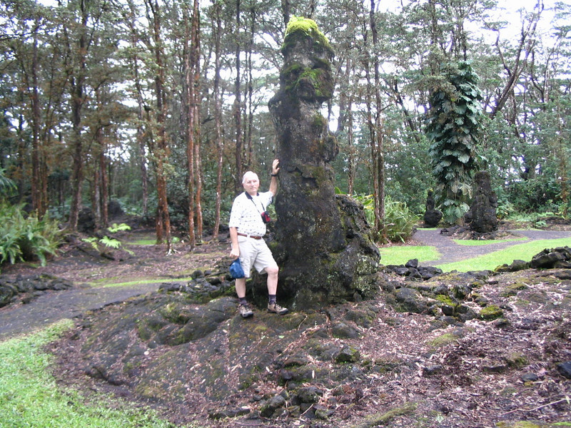 Hundreds of years ago, a fast moving flow of hot lava hit this patch of wet 'O'hia trees. The lava forever encased the structures leaving behind vertical, hollow, lava tubes where each tree once stood.