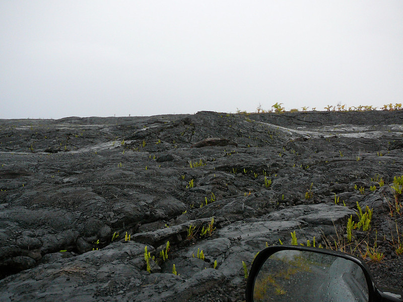 Start of a lava field