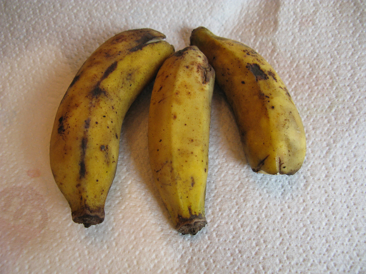 Apple Bananas<br /> February 3, 2008