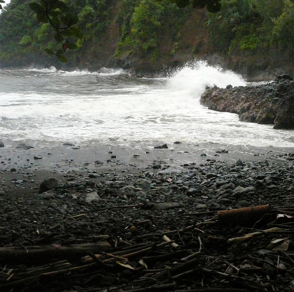 Alakahi Trail February 8, 2008