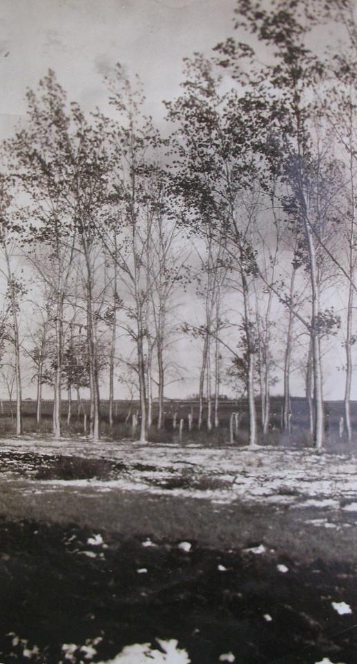 North Dakota<br /> c. 1925