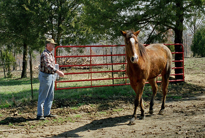 George, whispering to a horse,  Rock Eddy Bluff B&B near Rolla, Missouri. Spring, 2001.