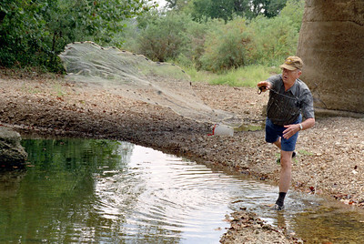 George Wright using a throw net to catch minnows for bait fishing, near Rock Eddy Bluff on the Gasconade River, late summer 2002.
