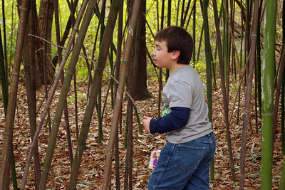 Ethan in the bamboo jungle. Thanksgiving at Rita's, 2012