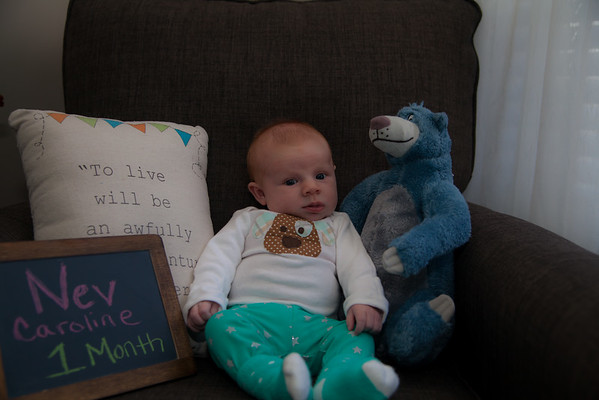 Nev 1st Month