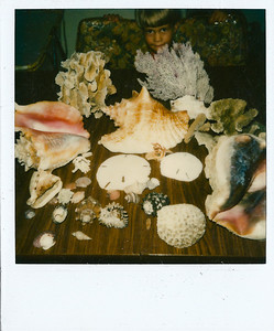 Matthew with seashells we had collected from the ocean(s) just after a few weeks of being in Panama. We were living in our first cramped quarters in 1981