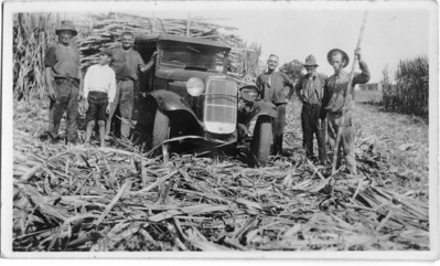 This photo was with Wally Munro's photo collection There is no inscription on the back.  The vehicle is loaded up with sugar cane. The man standing next to the driver side of the car looks like Wally Munro. The man on the left definitely looks like the man leaning back against wagon wheel in one of Wally's bullock team photos.  Photo from Wally Munro Collection - May McGilvery (nee Munro).