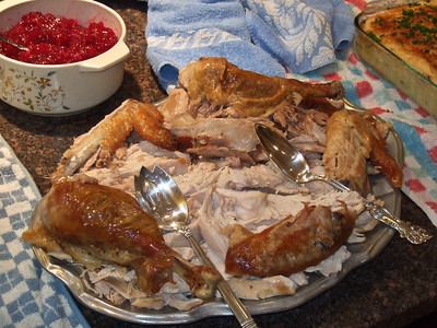 DTHANKSGIVING 2007THANKSGIVING 2007SCF1248