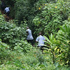 Bwindi Community Walk October 2018-6