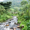Bwindi Community Walk October 2018-11