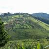 Africa, Drive from Bwindi to Rwanda-13