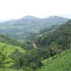 Africa, Drive from Bwindi to Rwanda-9