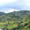 Africa, Drive from Bwindi to Rwanda-15